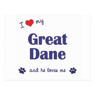 I Love My Great Dane (Male Dog) Postcard
