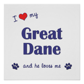 I Love My Great Dane Male Dog Posters