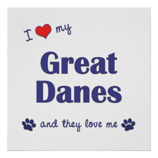 I Love My Great Danes Multiple Dogs Posters
