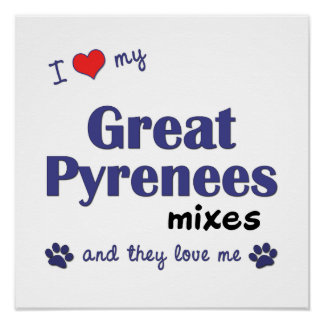 I Love My Great Pyrenees Mixes (Multi Dogs) Poster