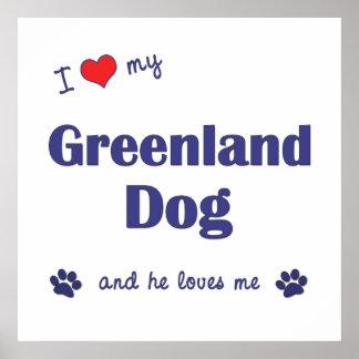 I Love My Greenland Dog Male Dog Poster