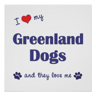 I Love My Greenland Dogs Multiple Dogs Poster