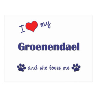 I Love My Groenendael (Female Dog) Postcard