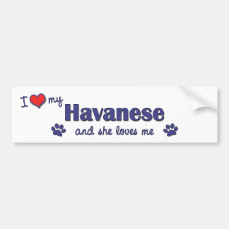I Love My Havanese (Female Dog) Bumper Sticker
