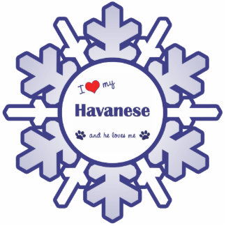 I Love My Havanese (Male Dog) Photo Cutouts