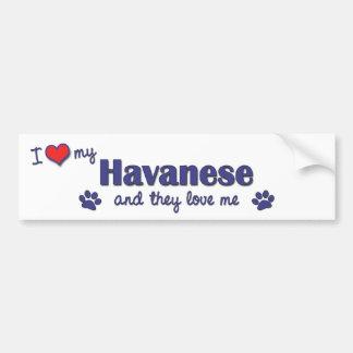I Love My Havanese Multiple Dogs Bumper Stickers