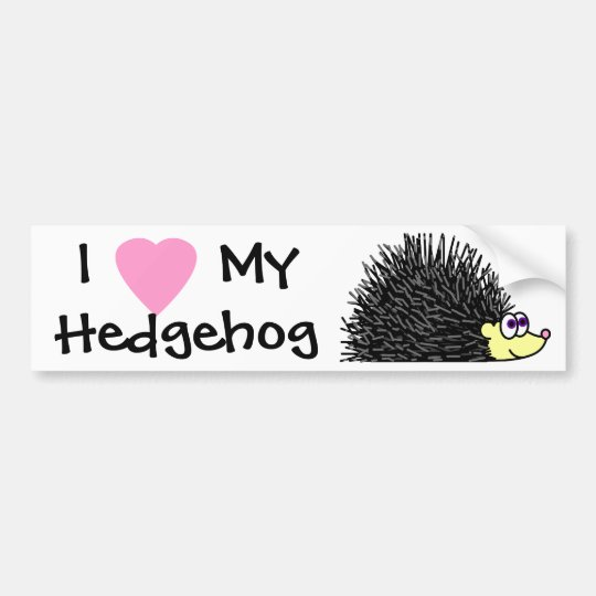 I Love My Hedgehog Bumper Sticker