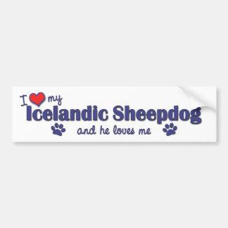 I Love My Icelandic Sheepdog (Male Dog) Bumper Sticker