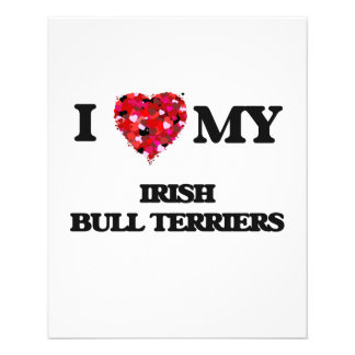 I love my Irish Bull Terrier 11.5 Cm X 14 Cm Flyer