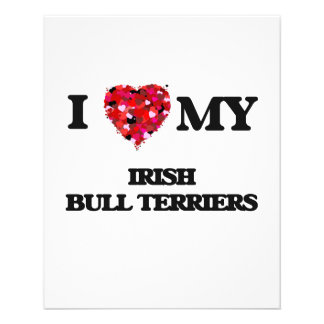 I love my Irish Bull Terriers 11.5 Cm X 14 Cm Flyer