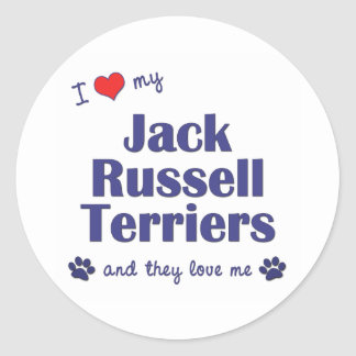 I Love My Jack Russell Terriers (Multiple Dogs) Classic Round Sticker