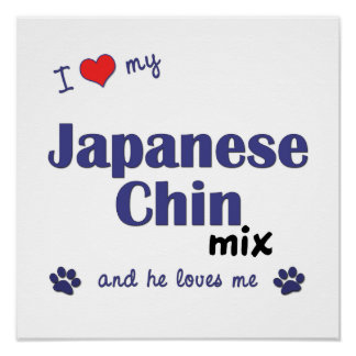 I Love My Japanese Chin Mix (Male Dog) Poster