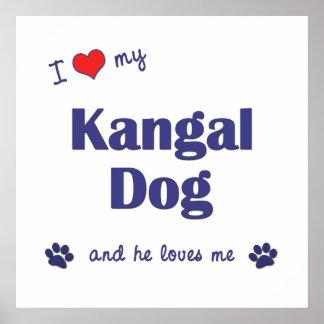 I Love My Kangal Dog Male Dog Print