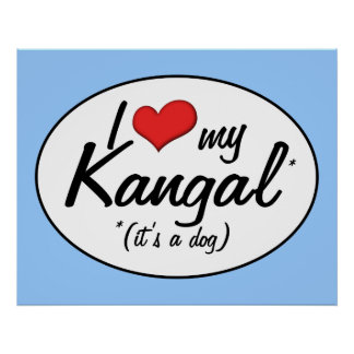 I Love My Kangal (It's a Dog) Posters