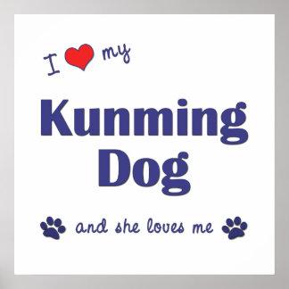I Love My Kunming Dog Female Dog Posters