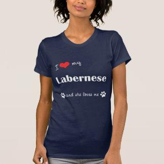 I Love My Labernese (Female Dog) Tshirt