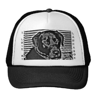 I LOVE MY LABRADOR CAP