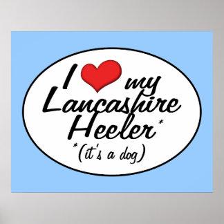 I Love My Lancashire Heeler (It's a Dog) Posters