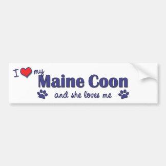 I Love My Maine Coon (Female Cat) Bumper Sticker