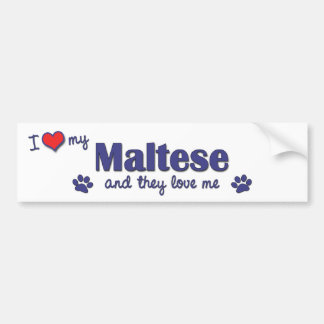 I Love My Maltese (Multiple Dogs) Bumper Sticker