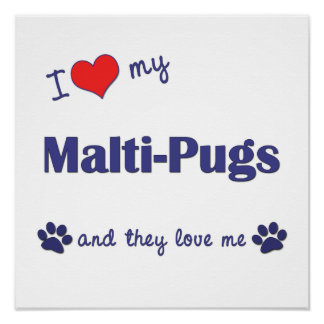 I Love My Malti-Pugs Multiple Dogs Posters