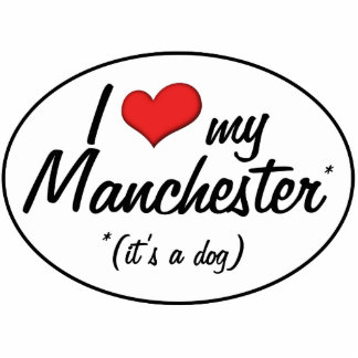 I Love My Manchester (It's a Dog) Photo Sculpture Decoration