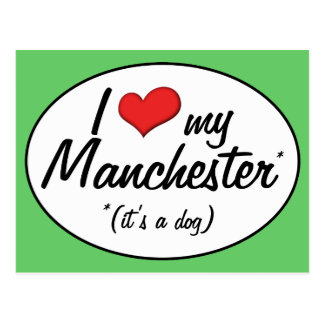 I Love My Manchester (It's a Dog) Postcard