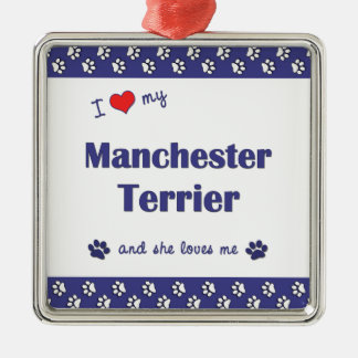 I Love My Manchester Terrier (Female Dog) Silver-Colored Square Decoration