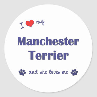 I Love My Manchester Terrier (Female Dog) Stickers