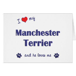 I Love My Manchester Terrier (Male Dog) Greeting Card