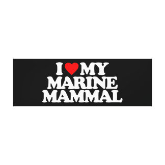 I LOVE MY MARINE MAMMAL CANVAS PRINTS