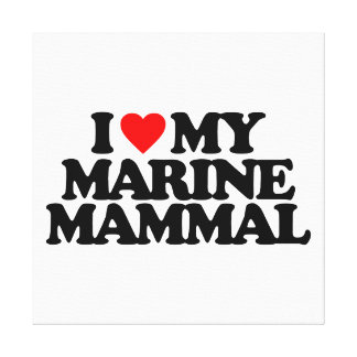 I LOVE MY MARINE MAMMAL STRETCHED CANVAS PRINT