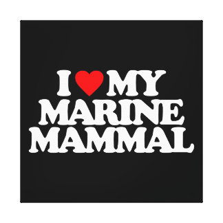 I LOVE MY MARINE MAMMAL GALLERY WRAPPED CANVAS