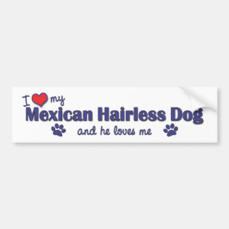 I Love My Mexican Hairless Dog (Male Dog) Bumper Sticker
