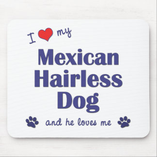I Love My Mexican Hairless Dog (Male Dog) Mouse Pad