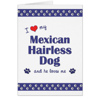I Love My Mexican Hairless Dog (Male Dog) Note Card