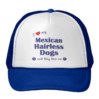 I Love My Mexican Hairless Dogs (Multiple Dogs) Hat