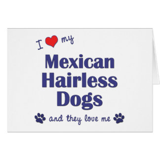I Love My Mexican Hairless Dogs (Multiple Dogs) Greeting Card