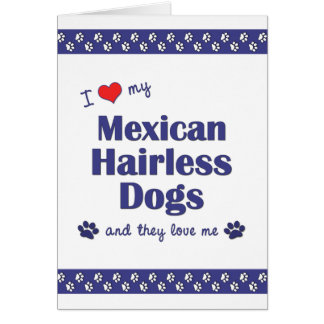 I Love My Mexican Hairless Dogs (Multiple Dogs) Note Card