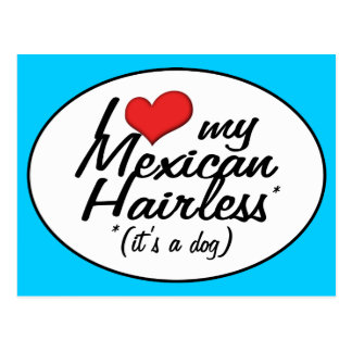 I Love My Mexican Hairless (It's a Dog) Postcard