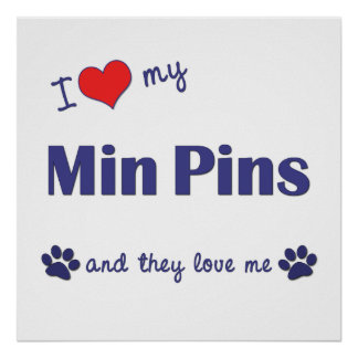 I Love My Min Pins (Multiple Dogs) Posters