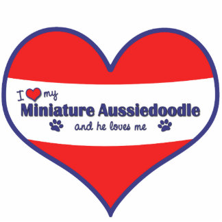 I Love My Miniature Aussiedoodle (Male Dog) Photo Sculpture Decoration