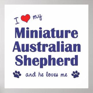 I Love My Miniature Australian Shepherd (Male Dog) Posters