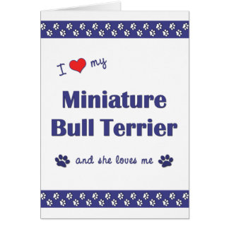 I Love My Miniature Bull Terrier Female Dog Greeting Cards