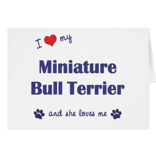 I Love My Miniature Bull Terrier (Female Dog) Greeting Cards