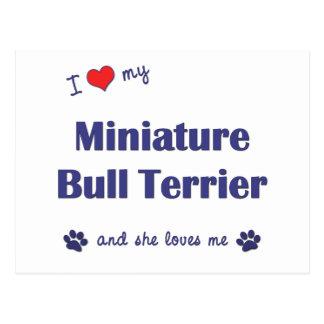 I Love My Miniature Bull Terrier Female Dog Postcard