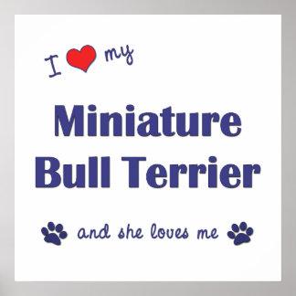 I Love My Miniature Bull Terrier (Female Dog) Poster