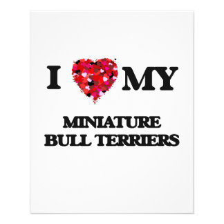 I love my Miniature Bull Terriers 11.5 Cm X 14 Cm Flyer