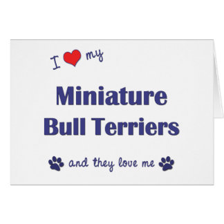 I Love My Miniature Bull Terriers (Multiple Dogs) Greeting Card