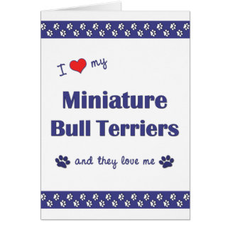 I Love My Miniature Bull Terriers Multiple Dogs Card